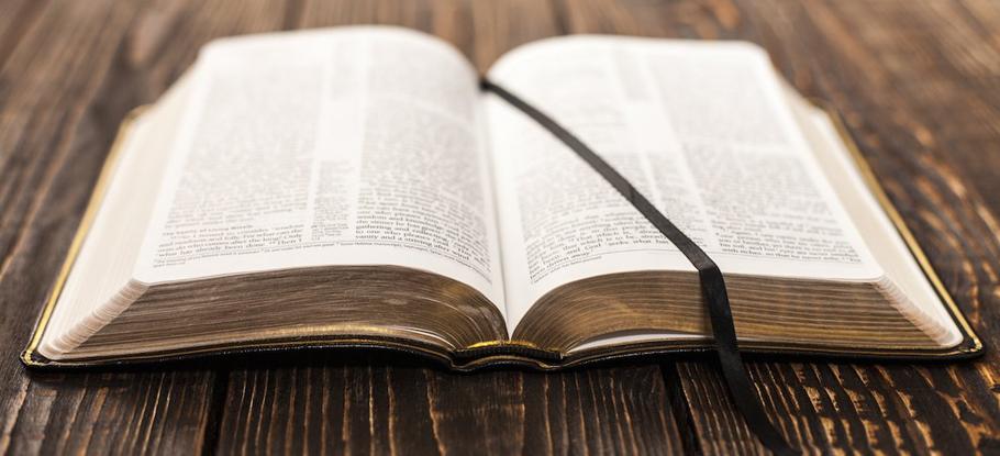 Bible-Pastor