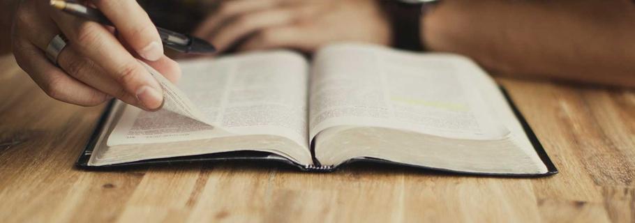 Predestination-Bible-Study