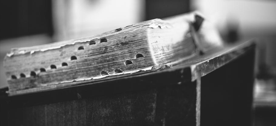 Social-Justice-Divide-Bible